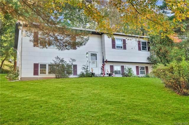 31 Pennsylvania Avenue, Valley Cottage, NY 10989 (MLS #H6150982) :: Goldstar Premier Properties