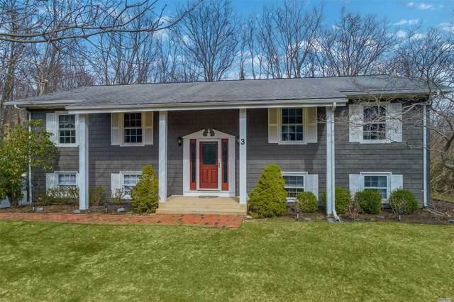 3 Ellen Drive, Port Jefferson, NY 11777 (MLS #3210717) :: Signature Premier Properties