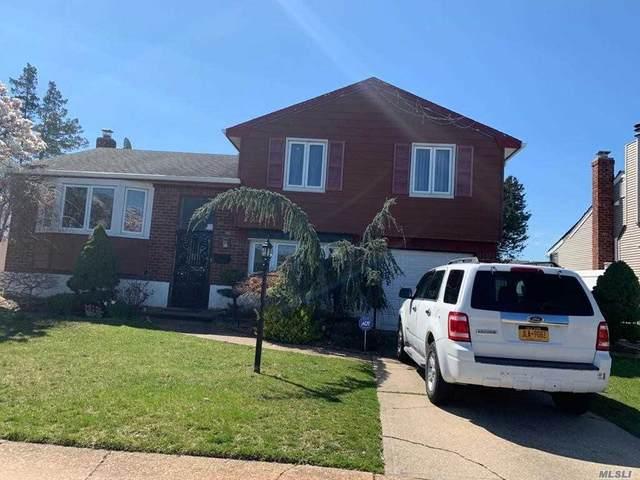48 Dante Avenue, Hicksville, NY 11801 (MLS #3210765) :: Signature Premier Properties