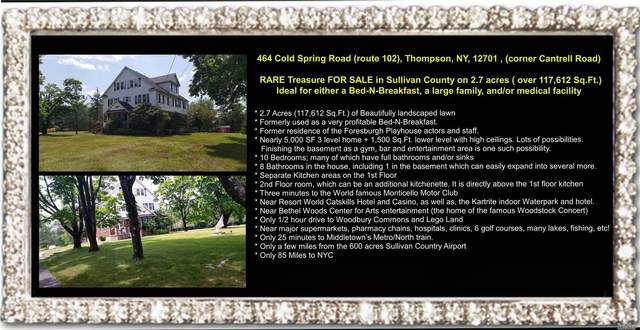 464 Cold Spring Road, Thompson, NY 12701 (MLS #3231573) :: William Raveis Baer & McIntosh