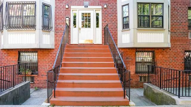 387 Adelphi Street, Brooklyn, NY 11238 (MLS #3232284) :: Mark Seiden Real Estate Team