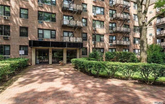 5 Birchwood Court 5C, Mineola, NY 11501 (MLS #3281363) :: Kevin Kalyan Realty, Inc.