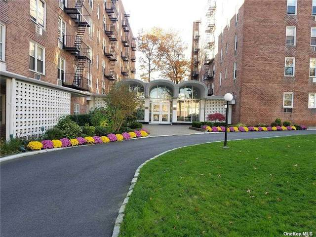 54-44 Little Neck Parkway 3J, Little Neck, NY 11362 (MLS #3285996) :: Goldstar Premier Properties