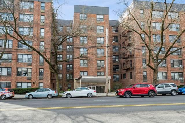 4315 Webster Avenue 6D, Bronx, NY 10470 (MLS #3298224) :: RE/MAX RoNIN