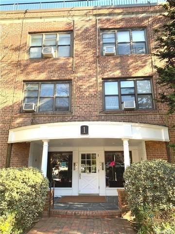 1 Townhouse Place 3K, Great Neck, NY 11021 (MLS #3300684) :: Howard Hanna | Rand Realty