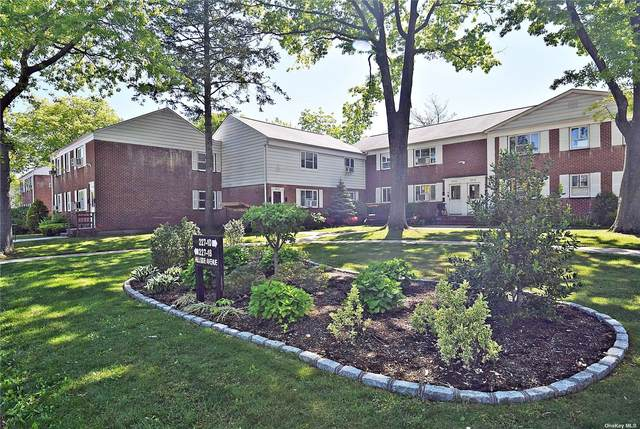 227-20 Hillside Avenue Lower, Queens Village, NY 11427 (MLS #3309865) :: Howard Hanna Rand Realty