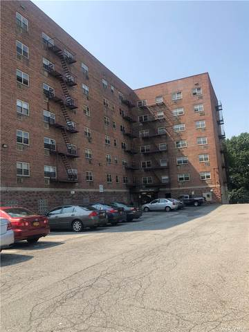 20 Secor Place 4A, Yonkers, NY 10704 (MLS #3314633) :: Howard Hanna | Rand Realty