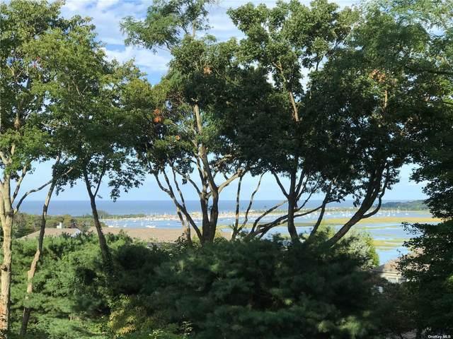 22 Timberline Circle #22, Port Jefferson, NY 11777 (MLS #3318158) :: Carollo Real Estate