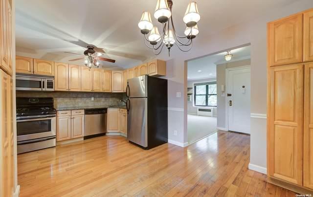 1 East Mill Drive 2D, Great Neck, NY 11021 (MLS #3331183) :: Howard Hanna | Rand Realty