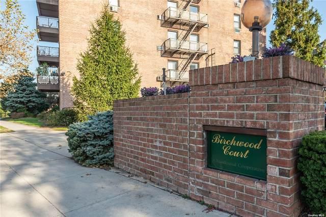 5 Birchwood Court 3B, Mineola, NY 11501 (MLS #3341488) :: Laurie Savino Realtor