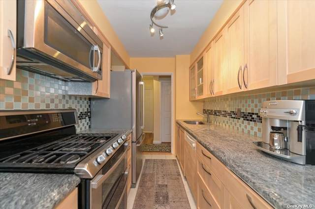 3 Birchwood Court 4D, Mineola, NY 11501 (MLS #3344752) :: Cronin & Company Real Estate
