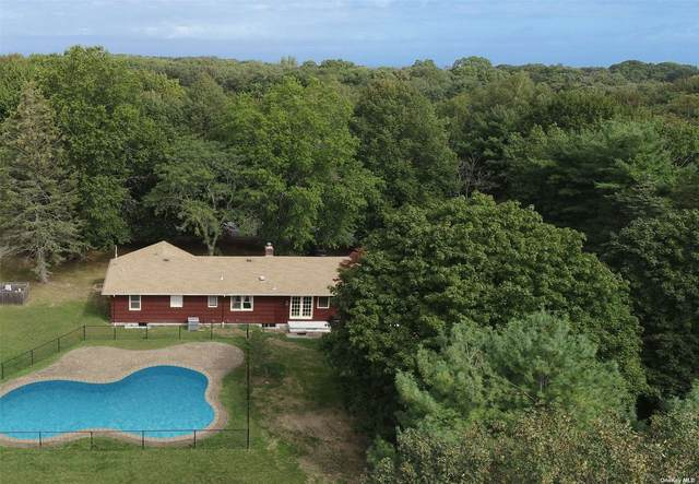 3950 Old North Road, Southold, NY 11971 (MLS #3347960) :: Goldstar Premier Properties