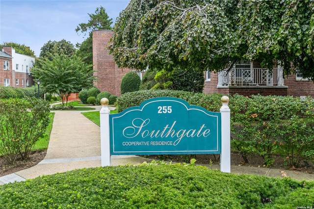 255 Central Ave B204, Lawrence, NY 11559 (MLS #3351753) :: Cronin & Company Real Estate