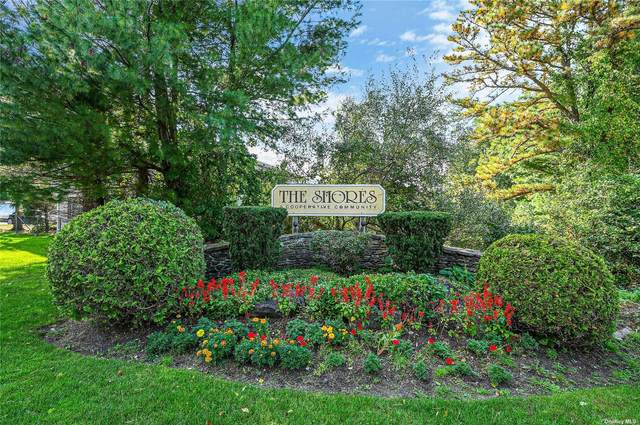 284 Lake Point Dr #284, Middle Island, NY 11953 (MLS #3352781) :: Corcoran Baer & McIntosh