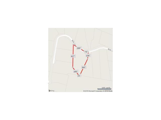 9 Bill S Lane, Marlboro, NY 12542 (MLS #4518383) :: Mark Boyland Real Estate Team