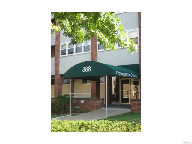 388 Westchester Avenue 1F, Port Chester, NY 10573 (MLS #4547343) :: Mark Boyland Real Estate Team