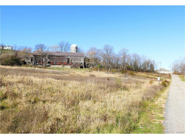 7 Silvertail Road, Chester, NY 10918 (MLS #4605658) :: Mark Seiden Real Estate Team