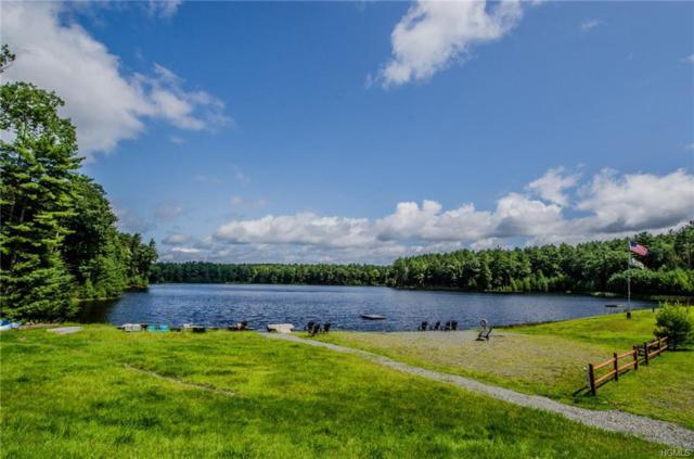 15 Summit Drive, Yulan, NY 12792 (MLS #4619454) :: Mark Boyland Real Estate Team