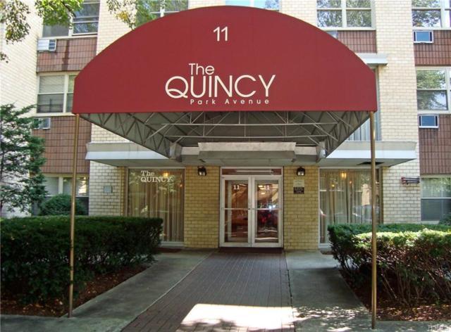 11 Park Avenue 2N, Mount Vernon, NY 10550 (MLS #4705156) :: William Raveis Baer & McIntosh