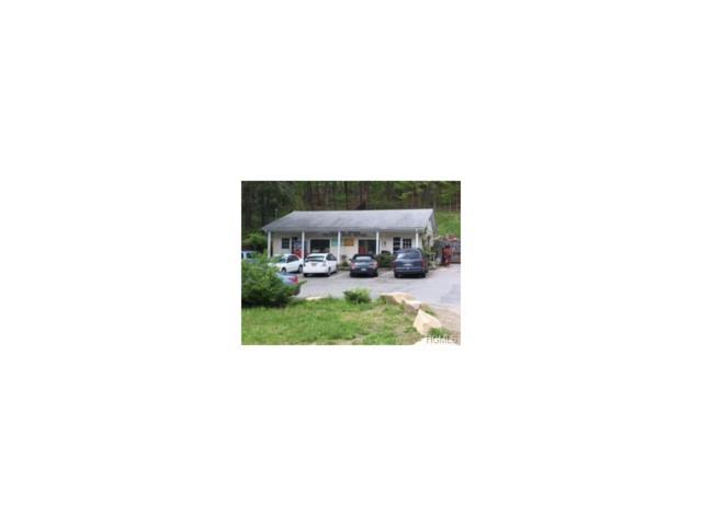 355 Waccabuc Road, Goldens Bridge, NY 10526 (MLS #4706029) :: Mark Boyland Real Estate Team