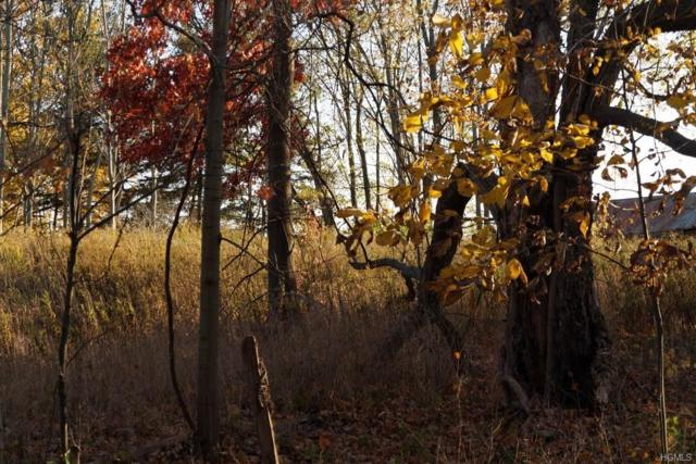 Firwood Road, Wurtsboro, NY 12790 (MLS #4712549) :: Mark Seiden Real Estate Team