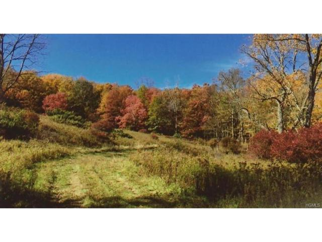 2715 State Route 17B, Cochecton, NY 12726 (MLS #4712917) :: Mark Boyland Real Estate Team