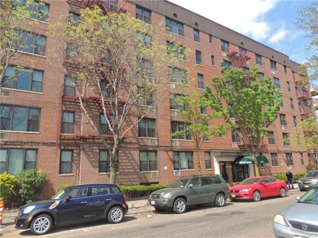 2015 St. Paul Avenue 1I, Bronx, NY 10461 (MLS #4720230) :: Mark Boyland Real Estate Team