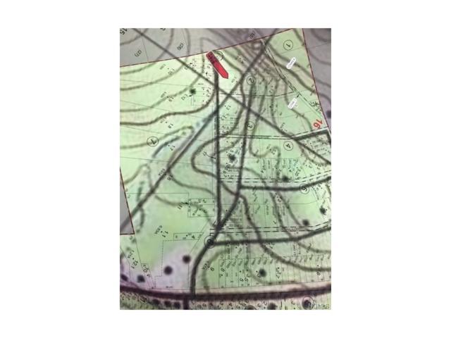Route 97, Narrowsburg, NY 12764 (MLS #4723650) :: Michael Edmond Team at Keller Williams NY Realty
