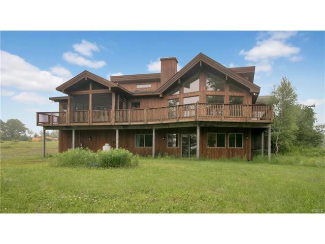 81 N Pond Drive, Parksville, NY 12768 (MLS #4725760) :: Mark Boyland Real Estate Team