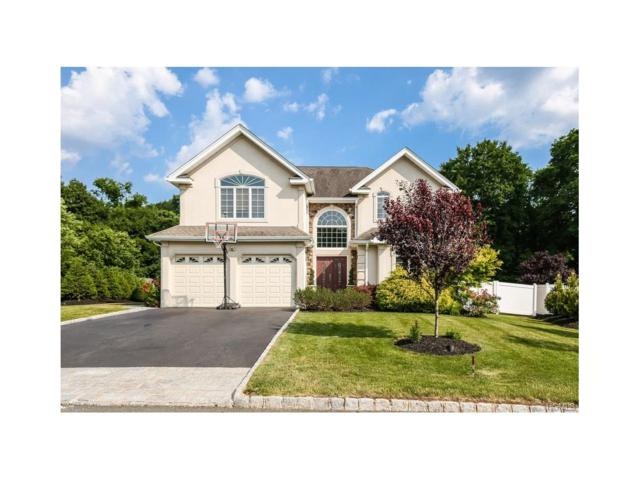 6 Murphy Court, Blauvelt, NY 10913 (MLS #4725800) :: William Raveis Baer & McIntosh