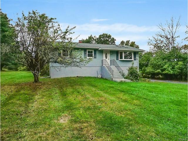 113 Tuthill Road, Blooming Grove, NY 10914 (MLS #4727007) :: William Raveis Baer & McIntosh