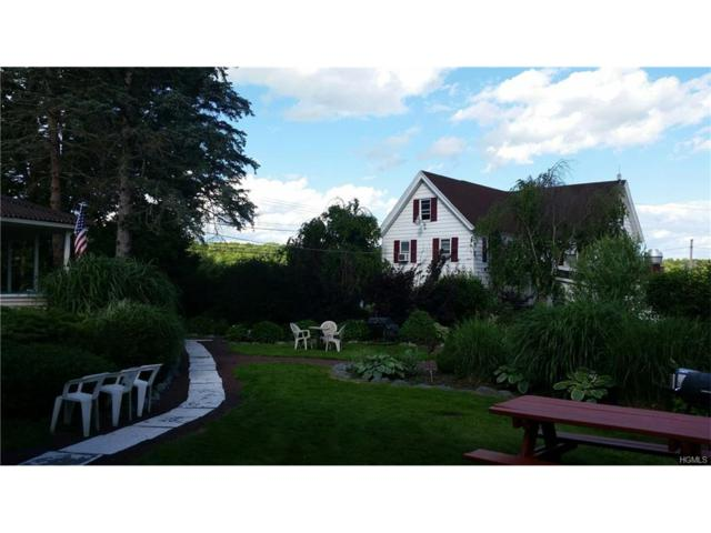 1166 County Road 114, Cochecton, NY 12726 (MLS #4728651) :: Mark Boyland Real Estate Team