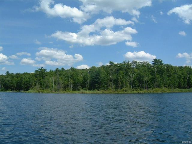 Lot J York Lake Estates Road, Barryville, NY 12719 (MLS #4729991) :: The Anthony G Team