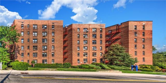 164 Church Street 6K, New Rochelle, NY 10805 (MLS #4730462) :: William Raveis Baer & McIntosh