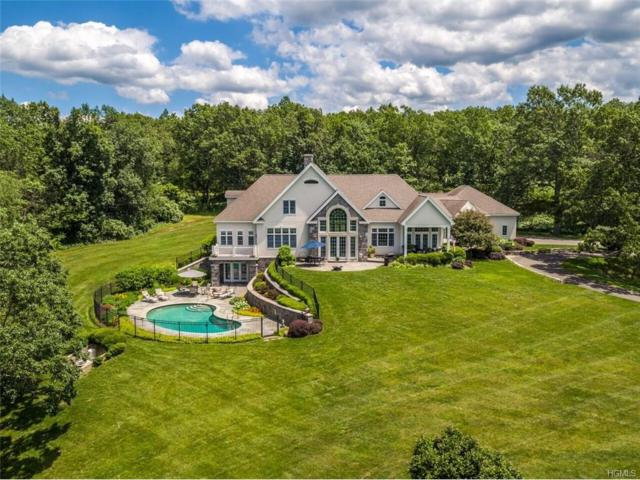 610 Taghkanic/Churchtown Road, Craryville, NY 12521 (MLS #4732678) :: Mark Boyland Real Estate Team