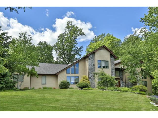 1 Rolyn Hills Drive, Orangeburg, NY 10962 (MLS #4734162) :: William Raveis Baer & McIntosh