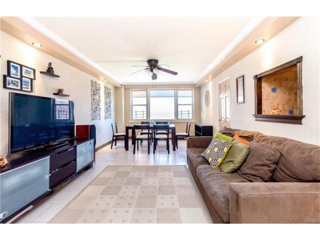 5800 Arlington Avenue 16X, Bronx, NY 10471 (MLS #4734257) :: Mark Boyland Real Estate Team