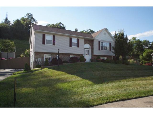 19 Chester Acres Boulevard, Chester, NY 10918 (MLS #4735765) :: William Raveis Baer & McIntosh