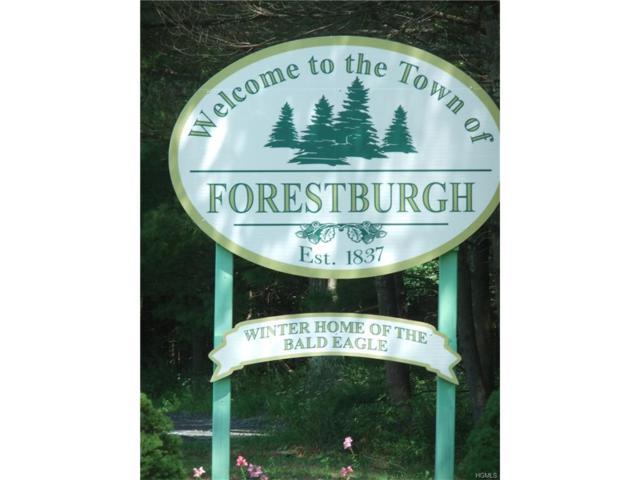 Route 42, Forestburgh, NY 12777 (MLS #4735898) :: Michael Edmond Team at Keller Williams NY Realty