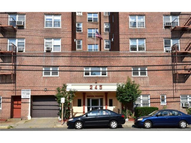 245 Bronx River Road 4D, Yonkers, NY 10704 (MLS #4737108) :: Mark Boyland Real Estate Team