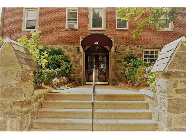 40 E Birch Street 5A, Mount Vernon, NY 10552 (MLS #4738377) :: Mark Boyland Real Estate Team