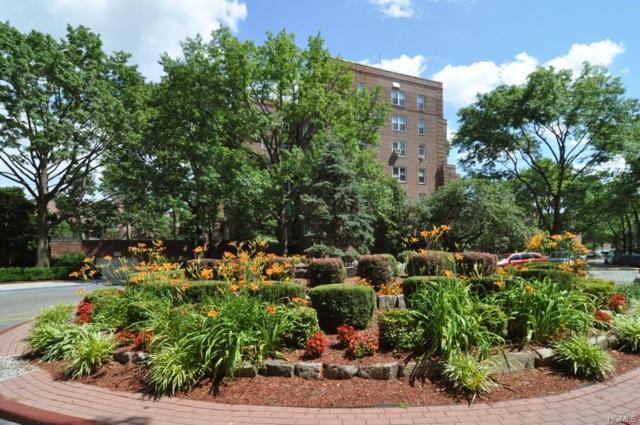 5615 Netherland Avenue 5C, Bronx, NY 10471 (MLS #4738781) :: William Raveis Legends Realty Group