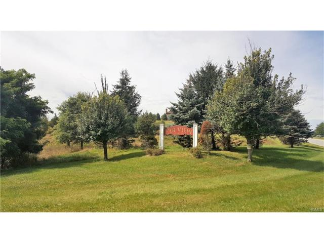 Farview, Campbell Hall, NY 10916 (MLS #4738893) :: William Raveis Baer & McIntosh