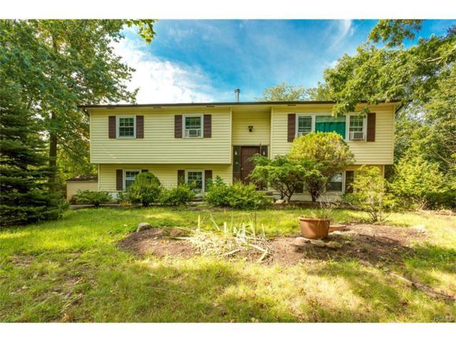 51 New County Road, Airmont, NY 10952 (MLS #4740531) :: William Raveis Baer & McIntosh
