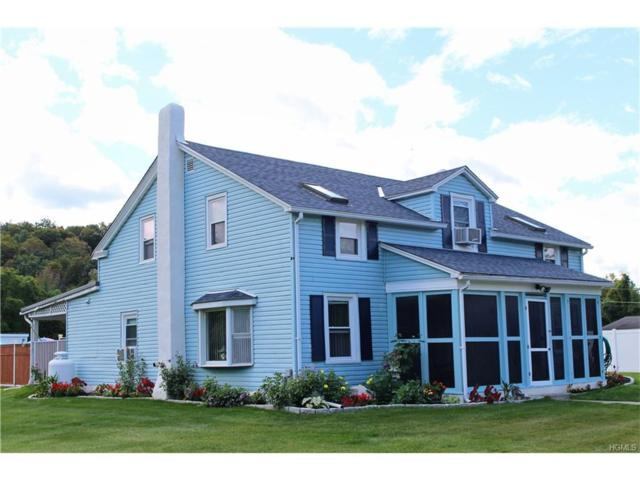 226 New Salem Road, Kingston, NY 12401 (MLS #4741161) :: Michael Edmond Team at Keller Williams NY Realty