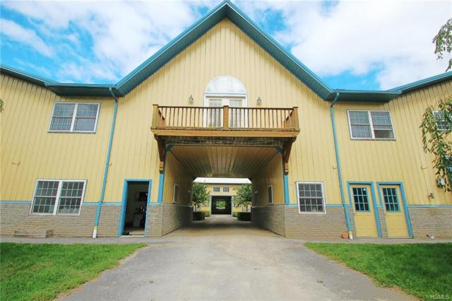 2054 Route 83, Pine Plains, NY 12567 (MLS #4744016) :: Stevens Realty Group