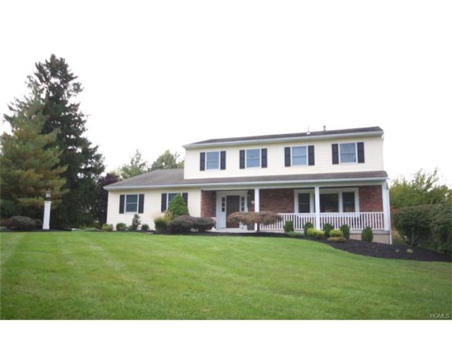 220 Mirth Drive, Valley Cottage, NY 10989 (MLS #4744743) :: William Raveis Baer & McIntosh