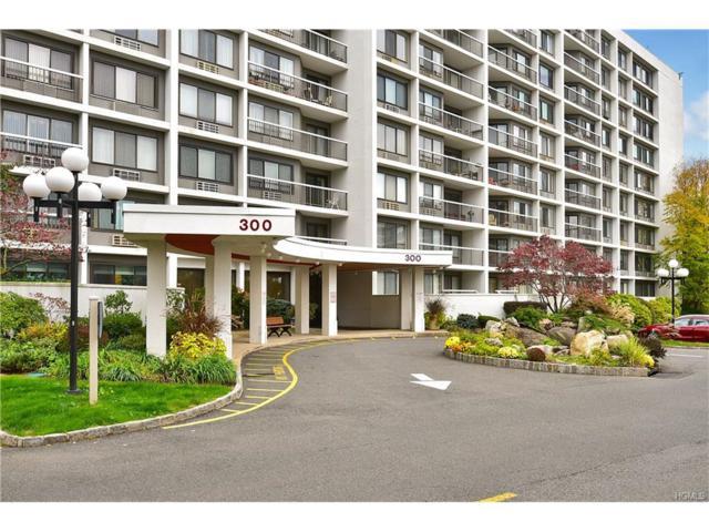 300 High Point Drive #401, Hartsdale, NY 10530 (MLS #4745072) :: Mark Boyland Real Estate Team