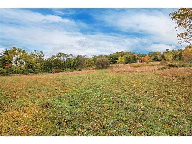 Bellvale Road, Chester, NY 10918 (MLS #4745112) :: William Raveis Baer & McIntosh