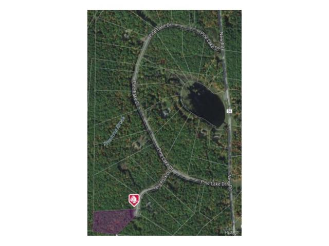 Big Rock Drive, Wurtsboro, NY 12790 (MLS #4746967) :: Mark Boyland Real Estate Team